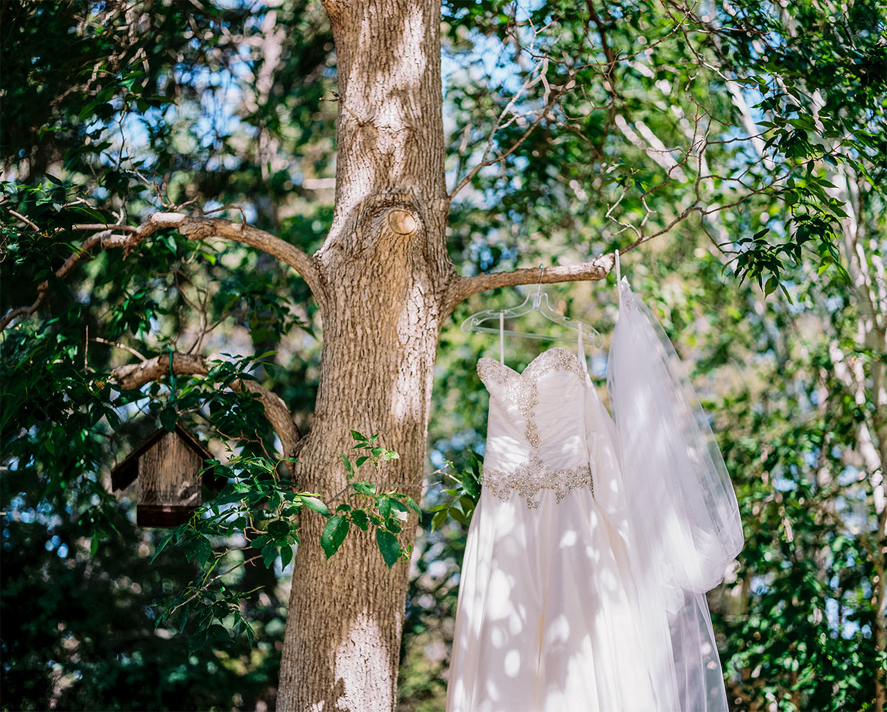 Evergreen Village Wedding in Manitoba